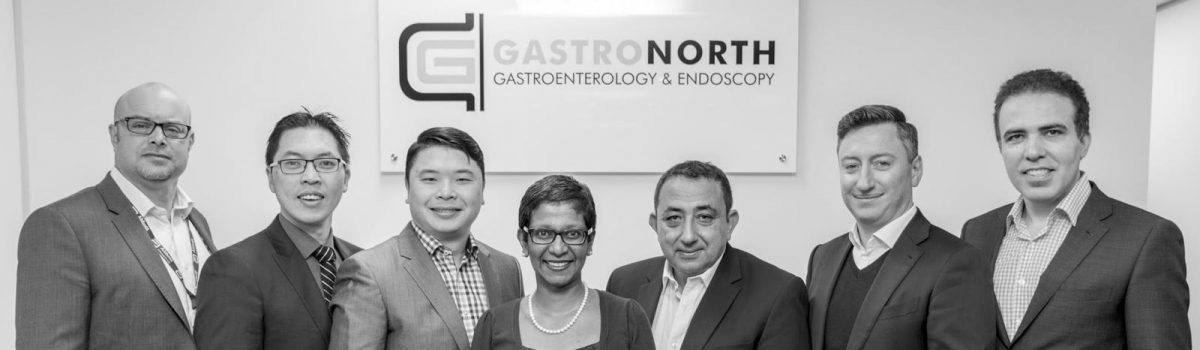 Introducing GastroNorth